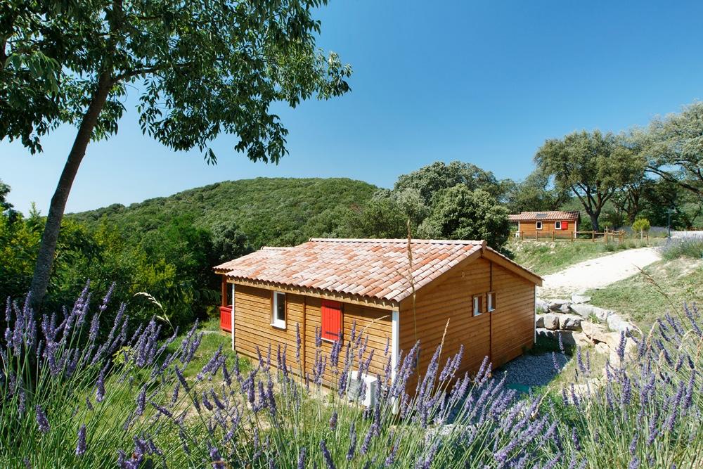 domaine sevenier camping location vacance en ardeche chalet chene vert 1 - Galeries