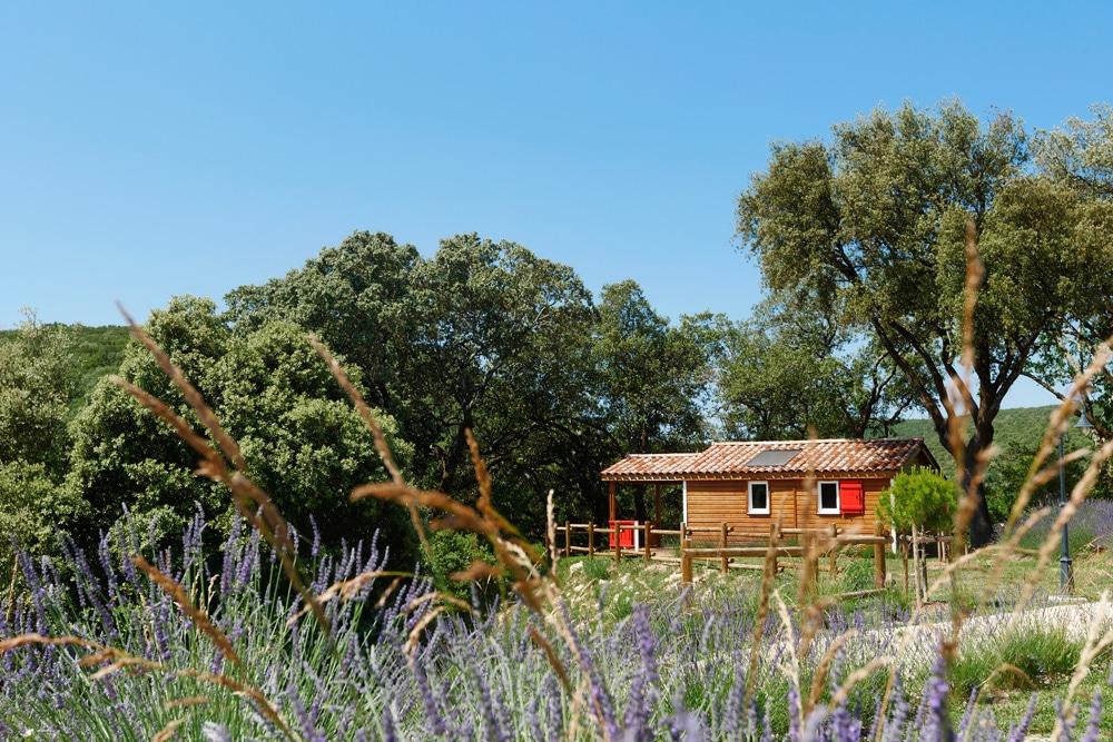 domaine sevenier camping location vacance en ardeche chalet chene vert 3 - Galeries