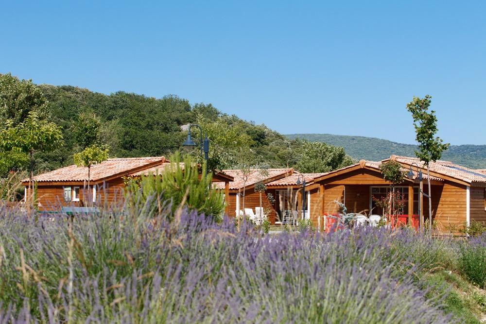 domaine sevenier camping location vacance en ardeche chalet chene vert 5 - DOMAINE DE SEVENIER 2012